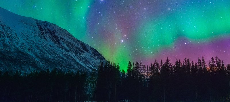 Green, Pink, and Blue Northern Lights