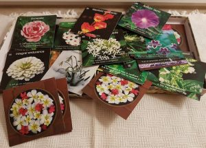 Cluster of think paper cards with flowers and words on them